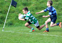 Armstrong Cup - Johnsonville vs Marist U11 2014