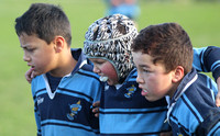 Johnsonville U8 vs Newlands 5 July 2014